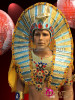 CHARISMATICO Complete Regal Bejeweled Golden Glitter Egyptian Pharaoh Men Costume Set
