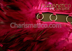 Halter Style Fuchsia Feathered Leotard Style Dress with Ring Detail