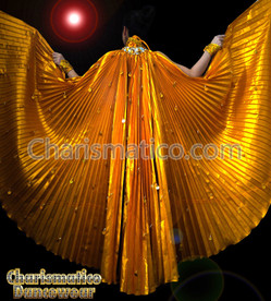 GOLD BURSLESQUE BELLY DANCE BRA & LARGE IRIS FAN WING SKIRT