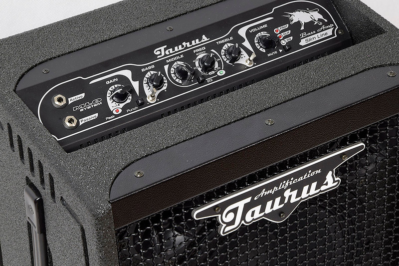 Taurus Amplification - TS-10 HC - 350W RMS Slim Line Bass Combo With 1X10 Neodymium Speaker