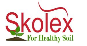 Skolex Store