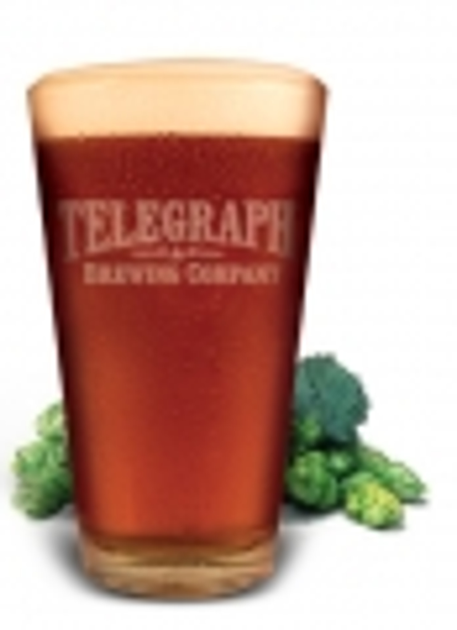 Telegraph Brewing Co.