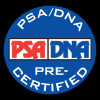 Jim Britt Signed Check PSA/DNA Authenticated With Acrylic Display Frame