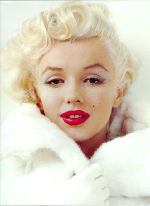 Marilyn Monroe Autopsy, PDF Download