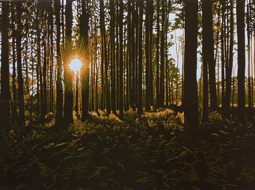 Summer Woodland Sunrise £295 framed