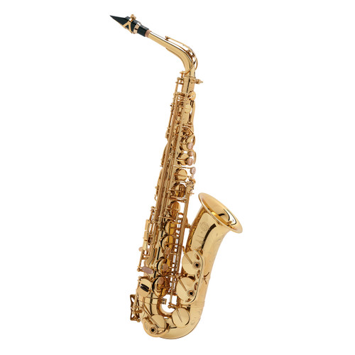Selmer Paris Professional Model 62J Alto Saxophone