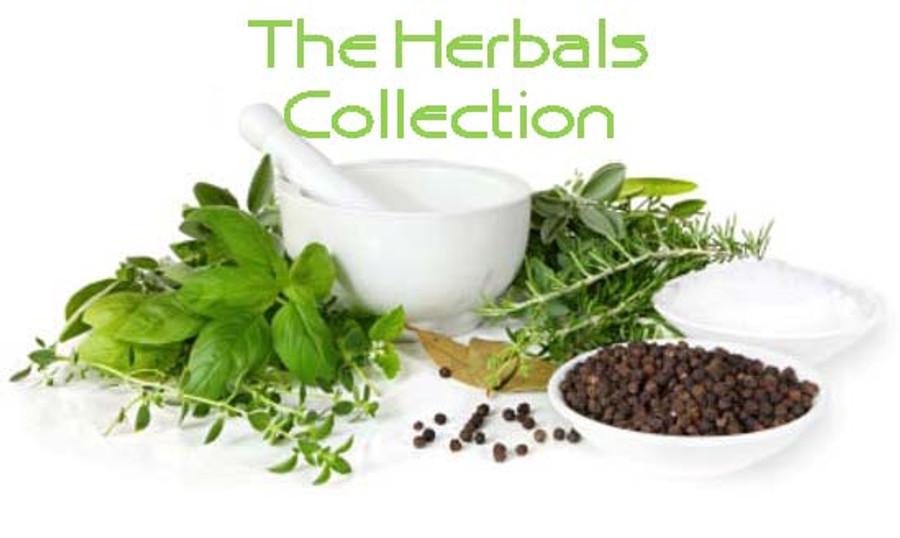 Herbal Infused Luxury Body Oil