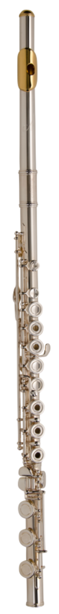 Armstrong 800BP flute-piccolo combination