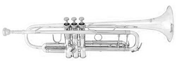 Bach TR500S standard trumpet (silver finish)