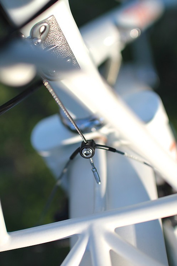 """Tomii Cycles Cable Hanger """"Magic Beans"""""""