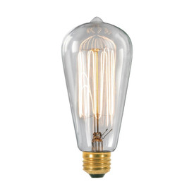 30w Edison Style Bulb