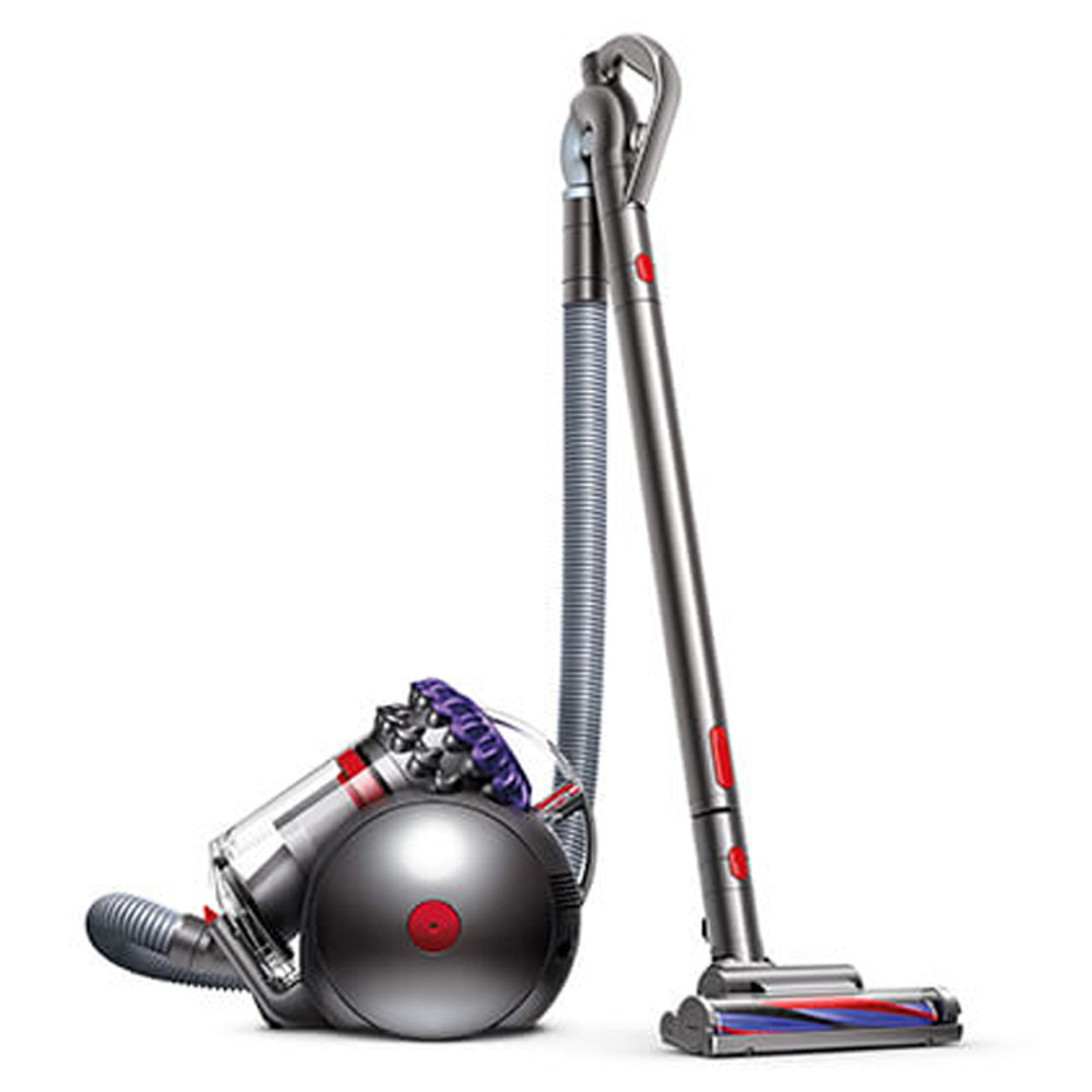 Dyson Origin Big Ball Animal