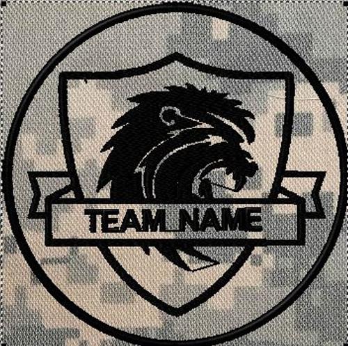 team patches lion shield