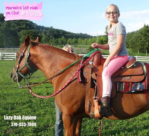 One Hour Lesson / Horse Provided