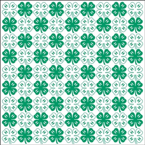 H Collection 4 H Clovers 12 X 12 Scrapbook Paper By It Takes Two