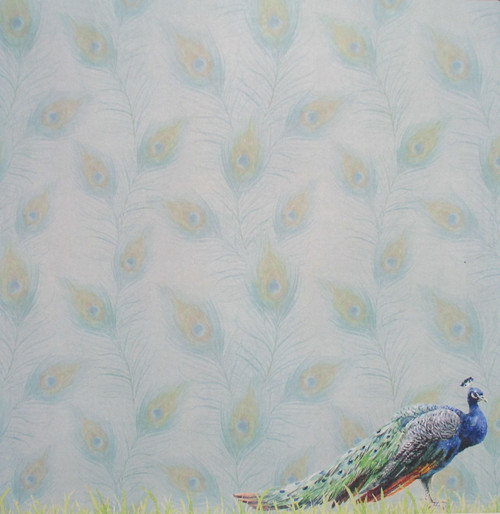 African Safari Collection Peacock Safari 12 x 12 Double-Sided Scrapbook Paper by Scrapbook Customs