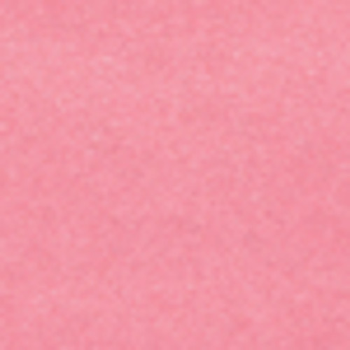 Petallics Coral Pink #10 Shimmer Envelopes by WorldWin Papers - Pkg. of 10
