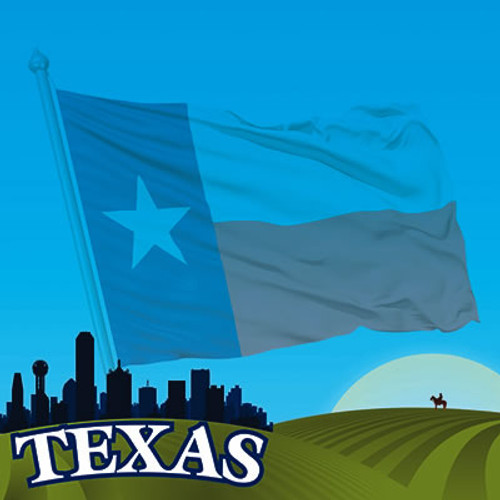 The State Line Collection Texas 12 x 12 Scrapbook Paper by Reminisce