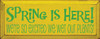 Shown in Old Yellow with Kelly lettering