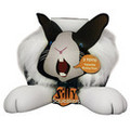 Silly squeaker - Funny feet bunnyTuff scale: No rating (Novelty toy)