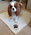 Blankets - Plush micro fleece (30 x 40), embroidered paw print (fish option for cats)