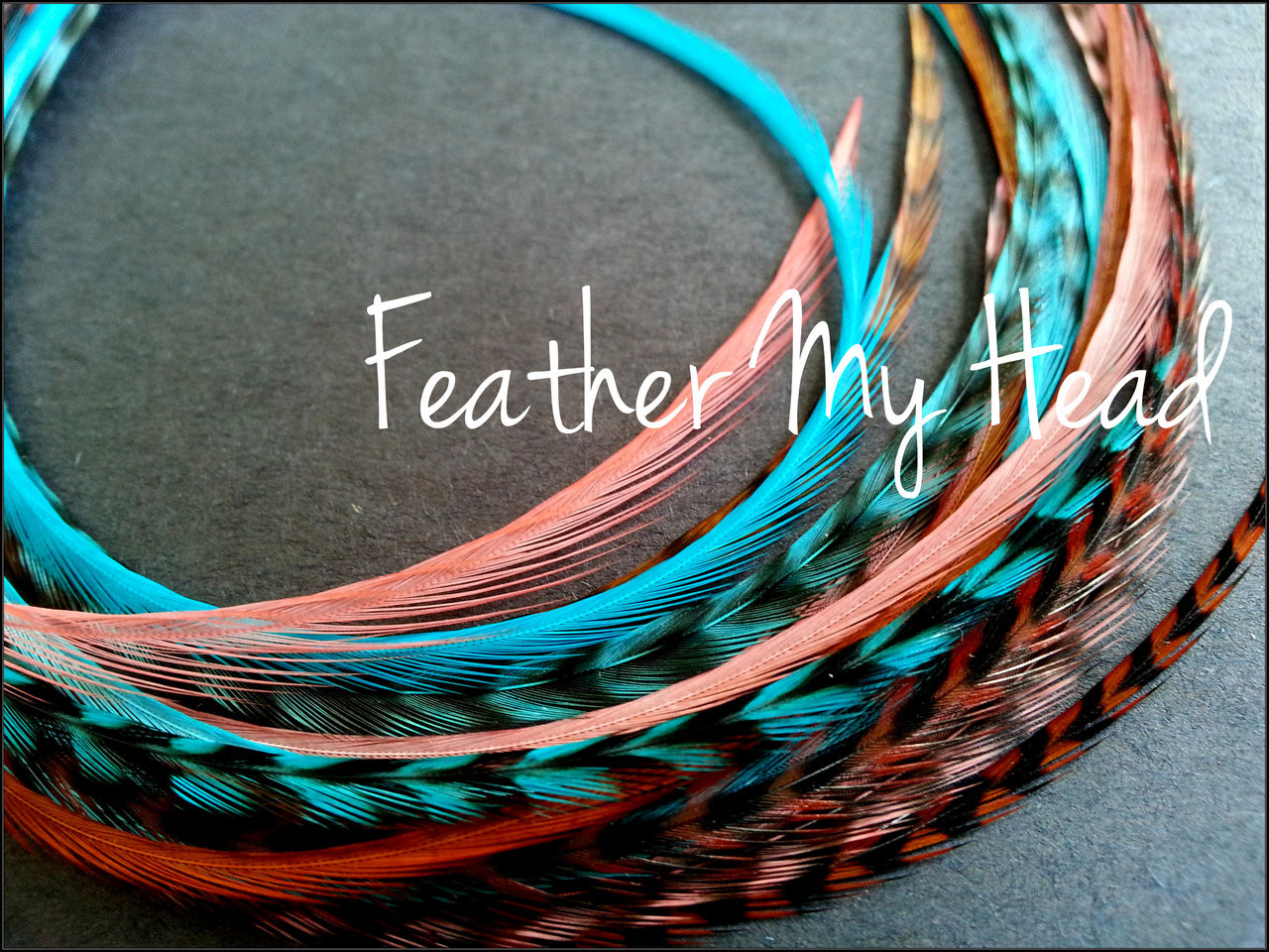 Feather hair extensions 16 pc mix of thin fashion euro feathers feather hair extensions 16 pc mix of thin fashion euro feathers long 9 solutioingenieria Choice Image