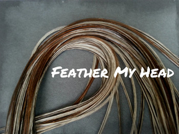 Hair Feather Extensions -Premium Grade Euro Feathers - Select Your Length - Natural Solid with Grey - Taupe Undertones