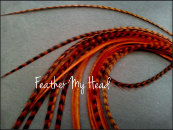 Hair Feather Extensions -Premium Grade Euro Feathers - Select Length And Style Feather - Ginger Brown - Red