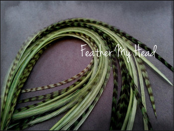 Hair Feather Extensions -Premium Grade Euro Feathers - Select Length And Style Feather - Sage Green