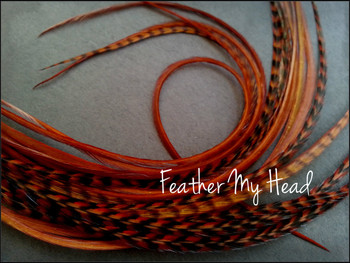 Feather Hair Extensions 9 - 12 Inches Long (23-30cm) Thin Fashion Euro - Grizzly Stripe And Solid Mix - 10 Pc Ginger Brown