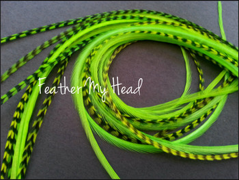 Feather Hair Extension - 10 Piece 9 - 12 inches Long (23-30 cm) Grizzly Stripe / Solid Mix - Chartreuse Green- Brights