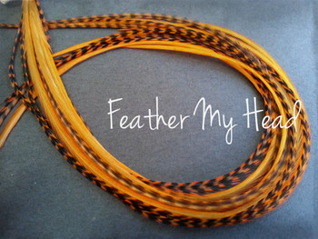 Feather Hair Extension - 10 Piece 9 - 12 inches Long (23-30 cm) Grizzly Stripe / Solid Mix - Orange - Brights