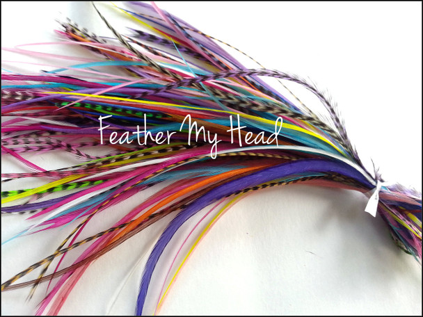 Natural Short Variety Pack Of Hair Feathers