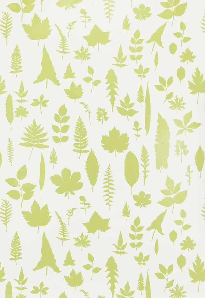 Schumacher Modern Nature Collection Leaves Wallpaper in Chartreuse 5005021(Priced and Sold by the Yard.  Minimum Order 2 Yards)