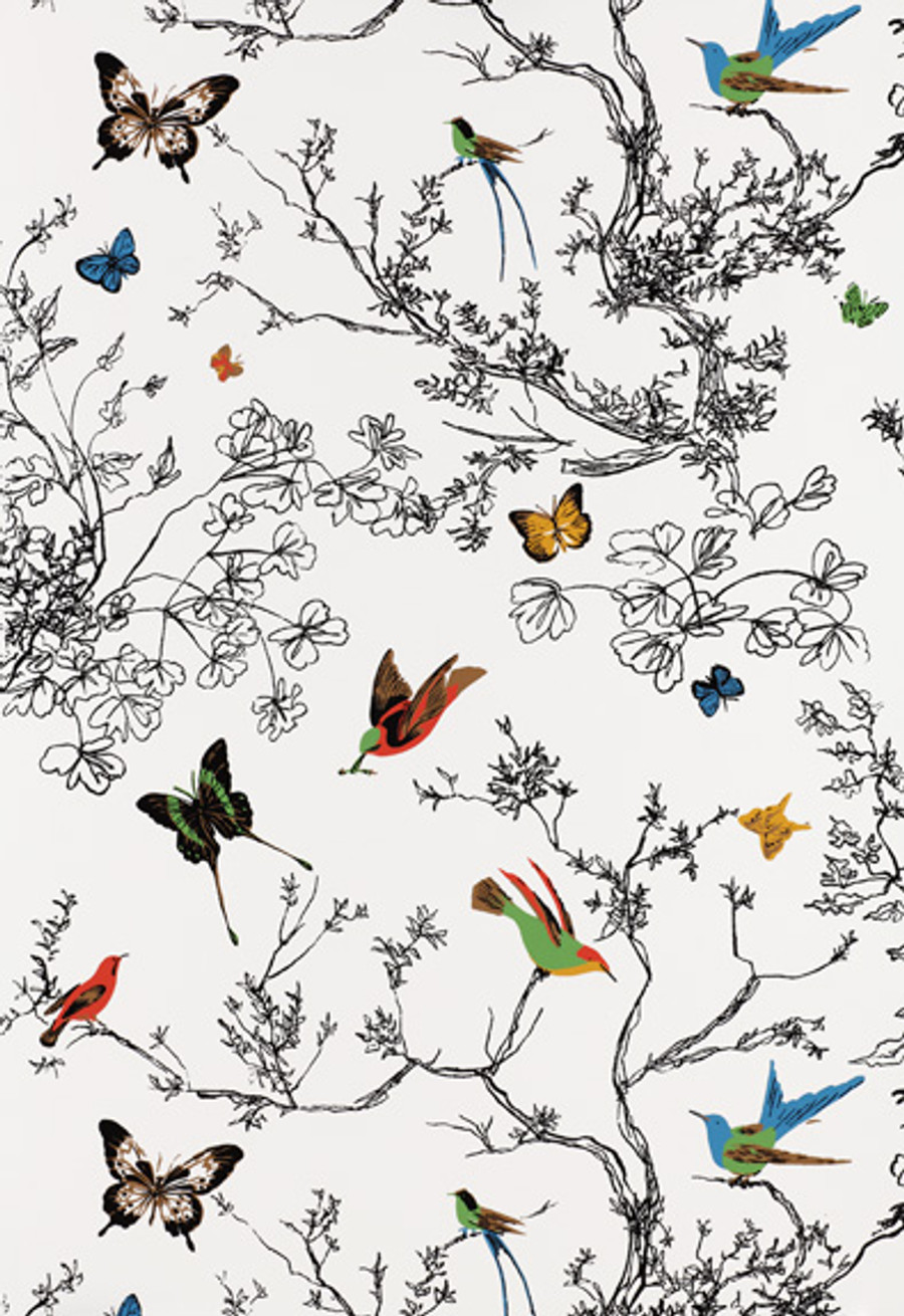 Schumacher Birds and Butterflies Wallpaper Multi on White 2704420