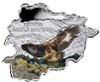 10 D Golden Eagle Map Shaped 1 oz Silver Coin Andorra 2013
