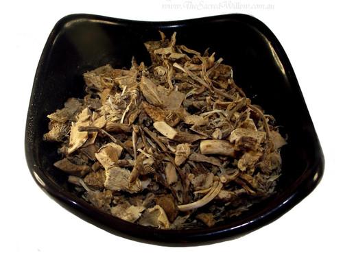 Butchers Broom (Ruscus aculeatus)