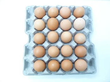 Eggs - Free Range Jumbo Tray (20 count)