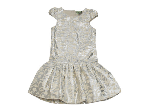 Sample Sale Silver Brocade Dress