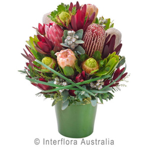 A beautiful all occasions arrangement of natives supplied by Ipswich Florist. Select Gifts to go with your selection.