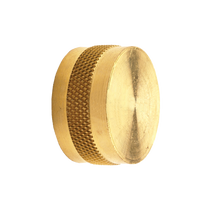 Brass 3/4 IN GHT Cap
