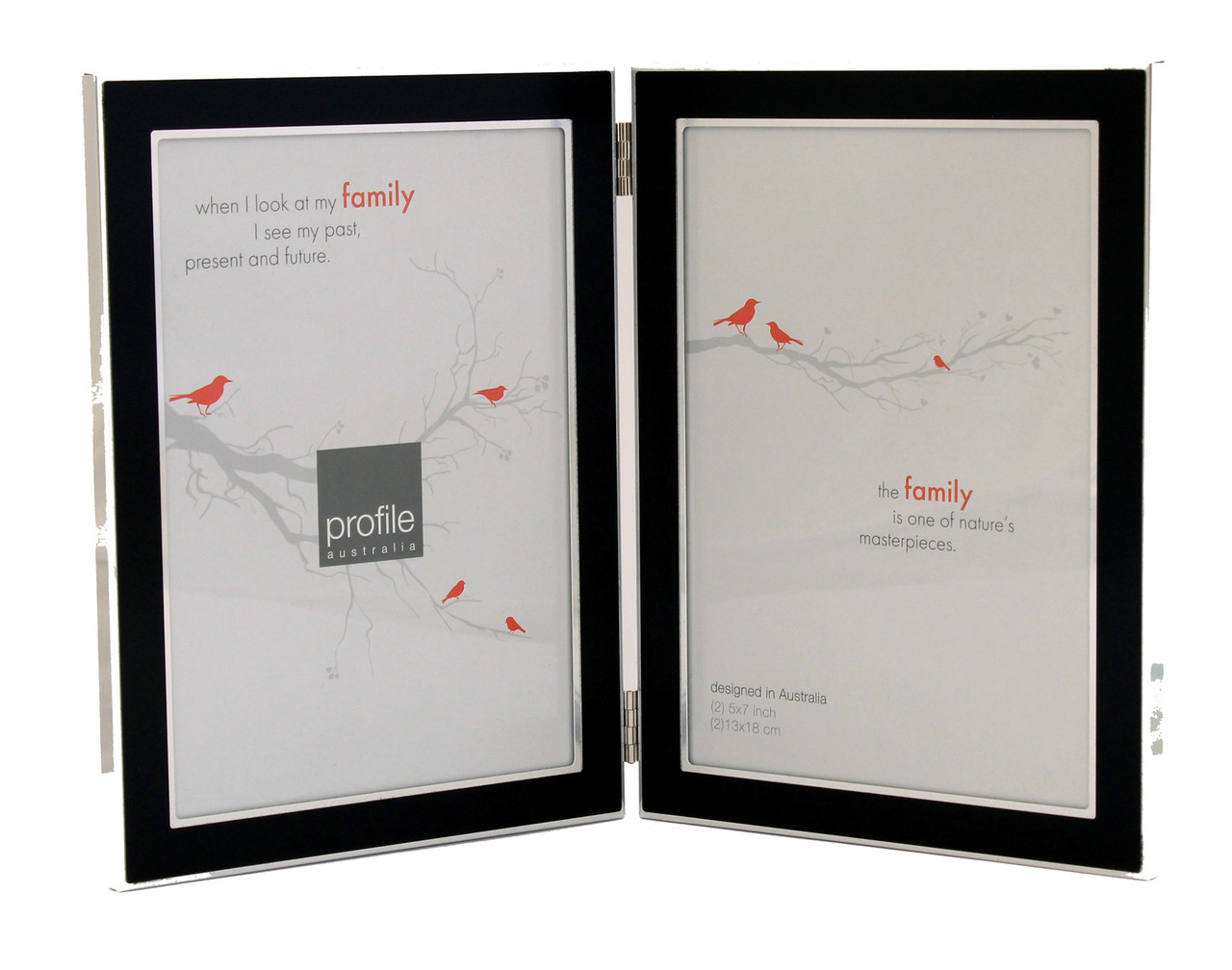 Double Black & Silver 5 x 7 in Vertical Photo Frame - Beautiful ...