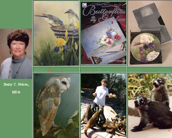 "Books by Sherry Nelson, MDA - a great way to gain a greater appreciation of Sherry""s artistic style"