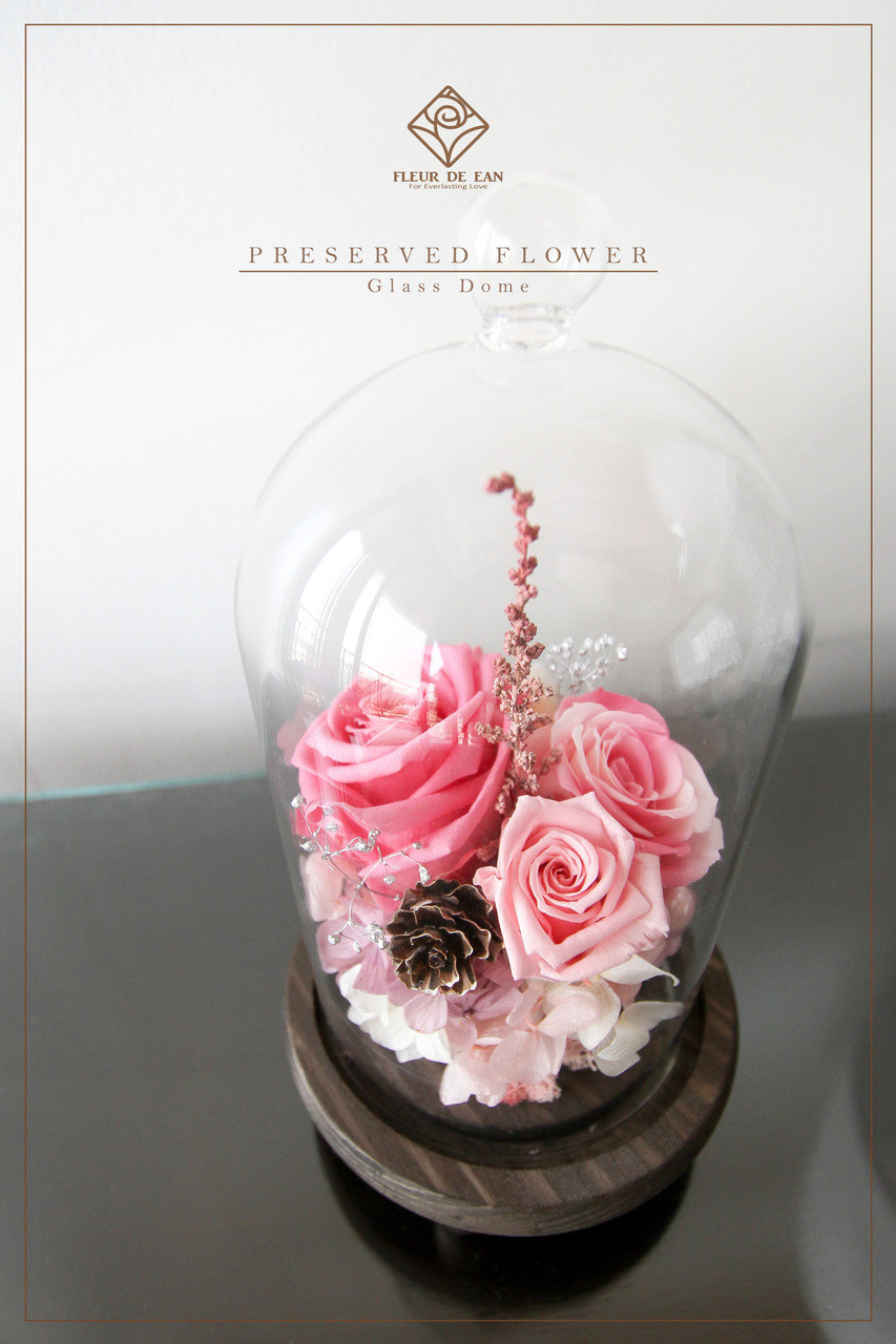 The classic ii preserved flower arrangement in glass dome fleur all pink mightylinksfo Images