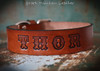 Leather custom dog collar with name