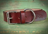 Leather custom dog collar with name. Stainless steel hardware.