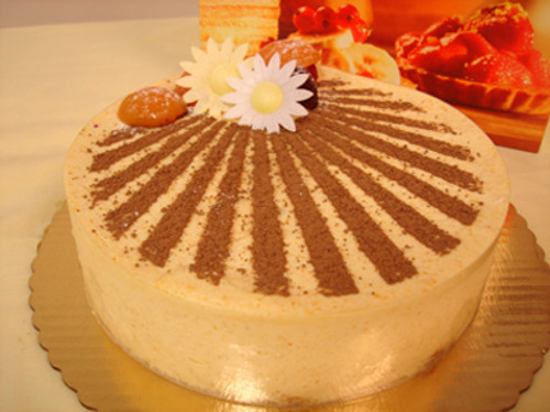 Delicious apricot mousse cake!
