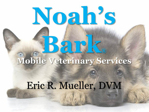 $100.00 Veterinary House Call