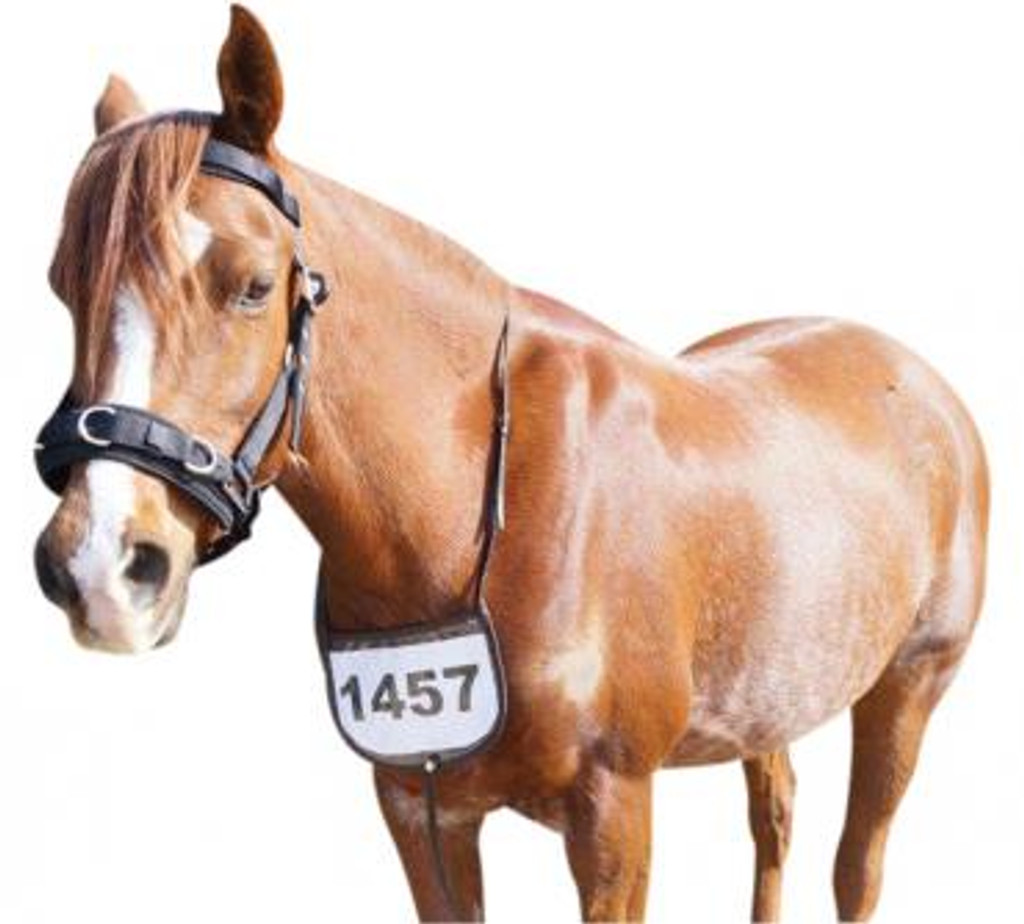 Leather Breastplate Number Holder (Black/Brown)