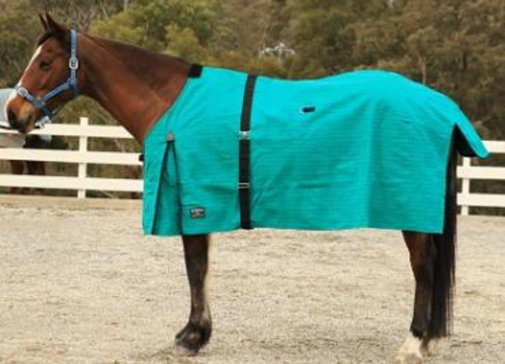 Eureka Canvas Ripstop Winter Horse Rug